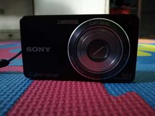 Sony Cybershot with Charger