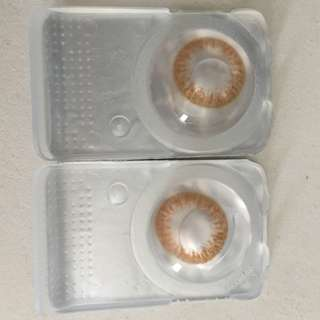 -0.50 and 0.00 Korean 1-Day Use Brown Contact Lens