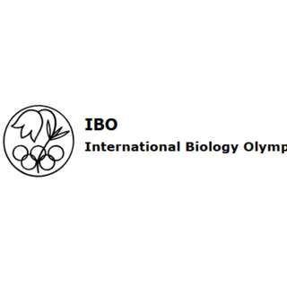 IBO 2012 to 2015 Past Year Papers with Solutions