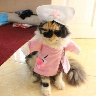 Baju kucing/anjing