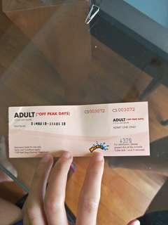 Sentosa adult ticket