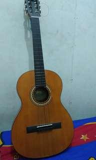 Di jual nih gitar akustik Valencia VC203H