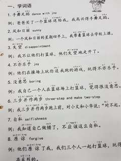P1 Chinese Compo guide from basic to higher chinese