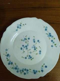 Arcopal Plate