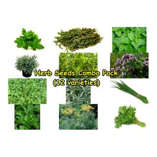 Herb Seeds Combo Pack (12 varieties)