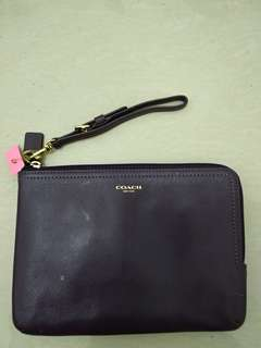 SALE! Pouch fossil