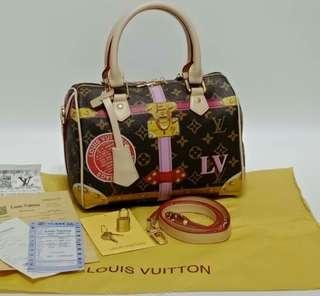 Louis Vuitton Speedy 25 Monogram Summer Trunk Collection