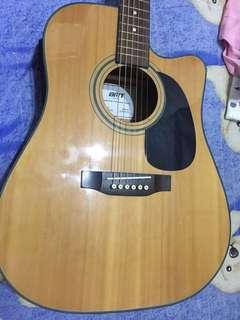 BMT 台灣製 單板電木吉他