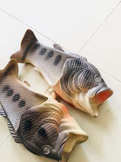 Fish slippers 6-7 yrs old