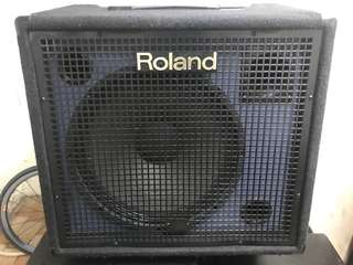 roland kc 550 keyboard amp