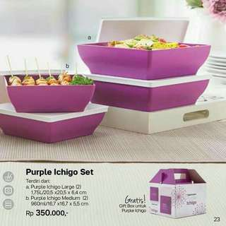 Tupperware ichigo set purple