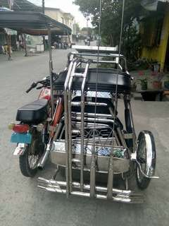 Tricycle with sidecar purestainless