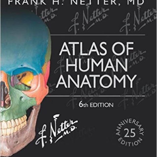 Atlas Of Human Anatomy Frank H Netter Books Stationery