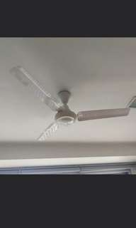 🚚 24hr Cheap Ceiling Fan Repair Services