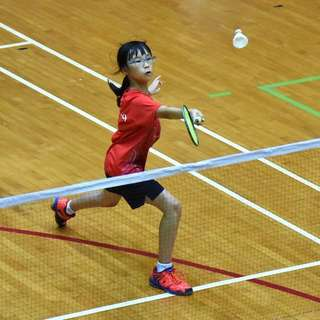 Badminton lessons with State Coach