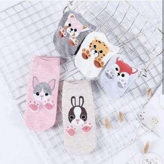 Animal Paws Socks (Buy 5 pairs for 250.00)
