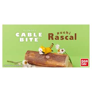 Cable bite for iPhone  puchi Rascal 浣熊 bandai 日本直送 正品