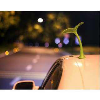 🚚 🌱 Mini Bean Sprout for Cars