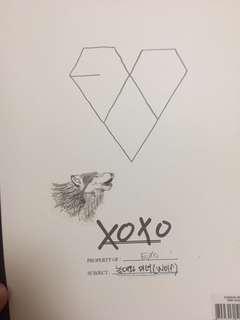 XOXO 淨專