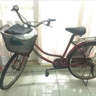 UNITED bicycle ( sepeda dewasa )