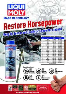 LIQUI MOLY CATALYTIC-SYSTEM CLEANER