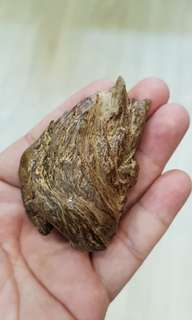 🌿Natural Agarwood Solid🍂Vietnam🌿沉香静舍🌿
