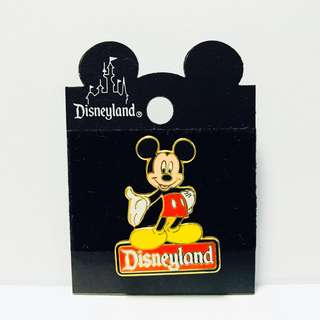 Disneyland Pin, California