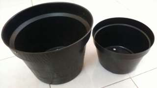 Pot Kembang Tanaman Besar & Kecil