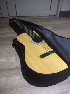 Burswood acoustic guitar
