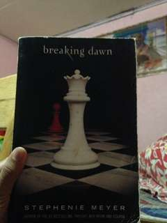 Twilight Breaking Dawn Book