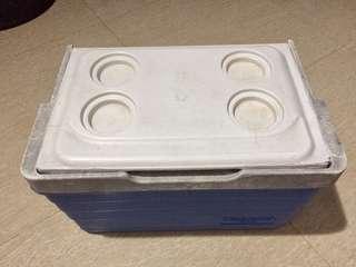 Igloo Medium Cooler