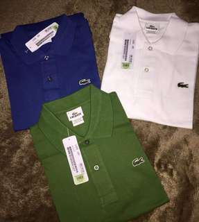 Lacoste Polo Shirt for Men and Women ( Authentic Quality)