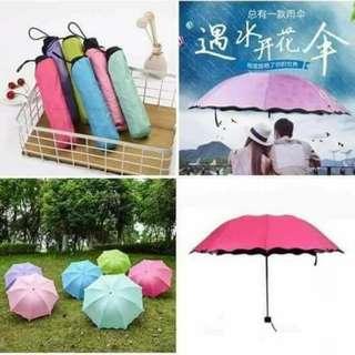 Magic Umbrella - COD