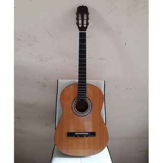 Roberto Guitar