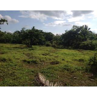 Land in Silang