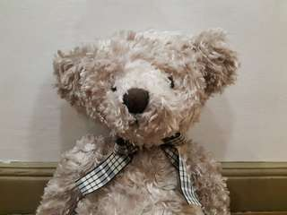 Huggable (Orson) Teddy Bear