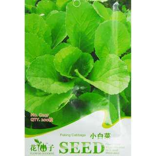 現貨1包 (食用蔬菜系列)小白菜種子