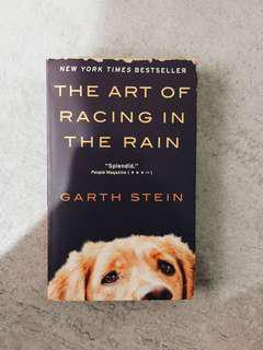 BOOK: THE ART OF RACING IN THE RAIN (english)