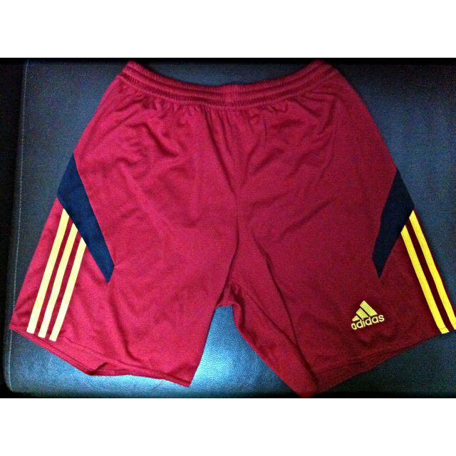best service 2dd23 906e7 Climacool Adidas Shorts