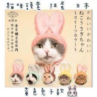 🚚 貓咪頭套 扭蛋 日本