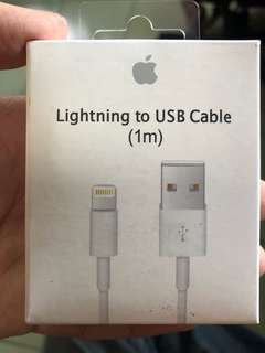 🚚 Iphone原廠1米線