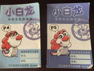 🚚 Chinese culture comics 小白龙中华文化加油站