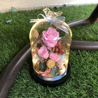 Preserved flowers in a Jar with LED light