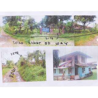 For Sale Foreclosed 6 Hectares Agri Land in Brgy Pangao Lipa City Batangas