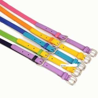 Ikat Pinggang Colourful