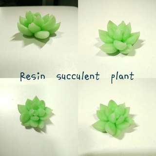 Resin clay Succulent