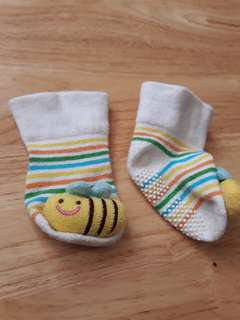 Baby bee socks