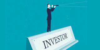 Investor In IT business