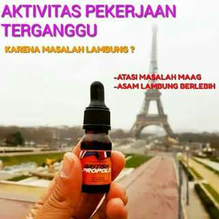 Suplemen herbal premium