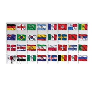 FIFA World Cup Flag (32 Countries)
